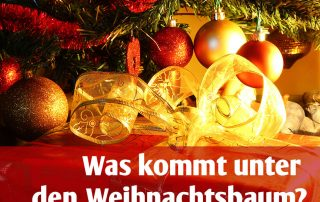 Was kommt unter den Weihnachtsbaum Titelbild mit Weihnachtskugeln und Tanne