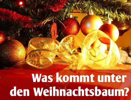 Einkaufsguide – Was kommt unter den Weihnachtsbaum?